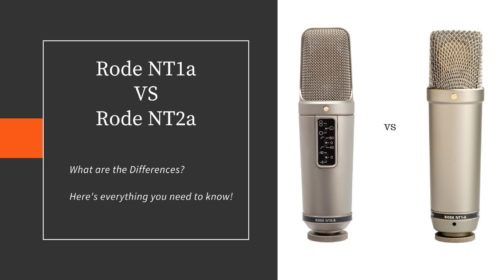 Rode NT1a vs NT2a; Which one is right for You?